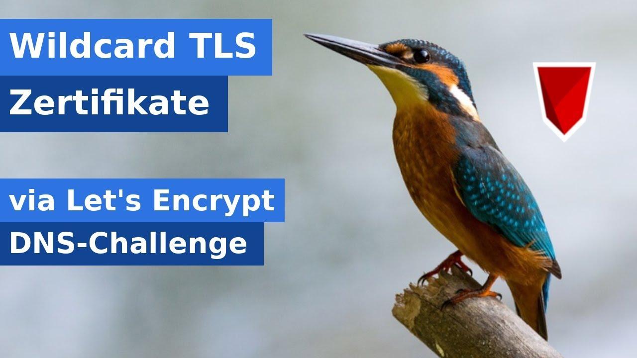 LetsEncrypt Wildcard Zertifikat erstellen (DNS-Challenge)