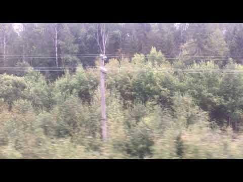 Пригородный поезд Иваново - Кинешма, перегон между 335 км и станцией Ермолино.
