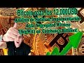Bitcoin roza los 12.000USD -  Implementan Segregated Witness (SegWit) en  Coinbase y Bitfinex!
