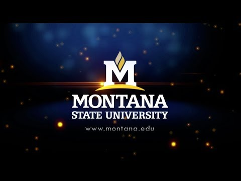 Life at Montana State University
