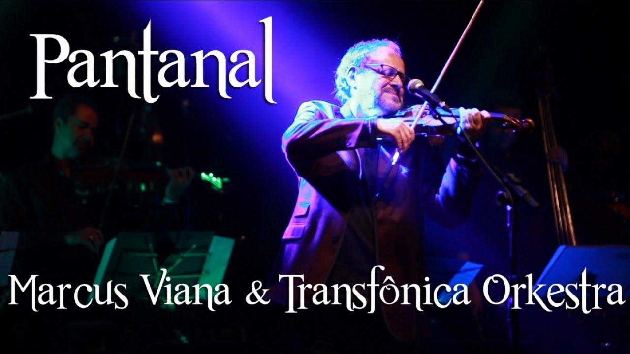 Marcus Viana - Pantanal - YouTube