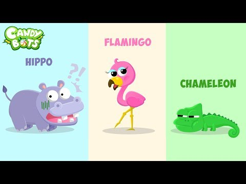 Candybots Animals NEW Release - Learn Full Name and Sound of Animal   Education Apps for Kids