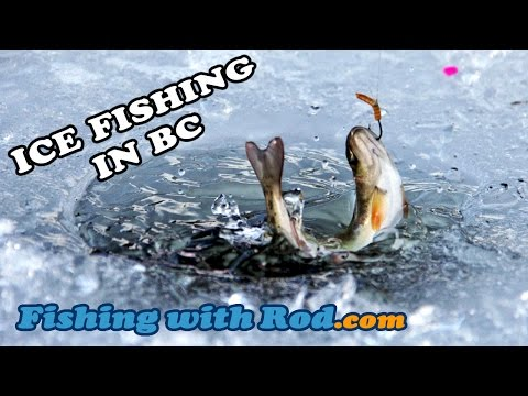 WINTER ICE FISHING FOR RAINBOW AND BROOK TROUT IN BC CANADA | Fishing With Rod