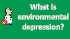 What is environmental depression ? | Mega Health Channel & Answers