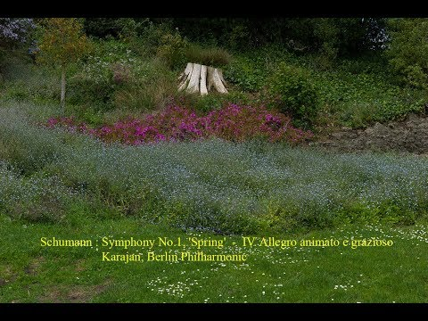 Schumann : Symphony No.1, 'Spring'  -  IV. Allegro Animato E Grazioso