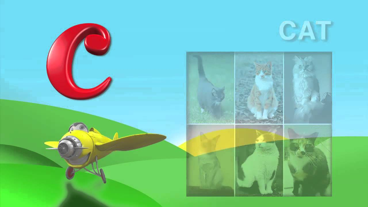 What Animals Begin With The Letter C From I Love My Abc