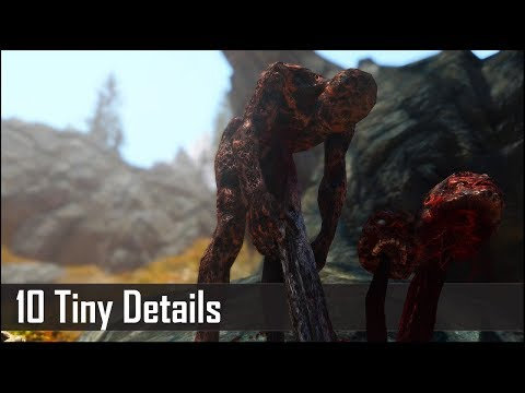 Skyrim: Yet Another 10 Tiny Details That You May Still Have Missed in The Elder Scrolls 5 (Part 18)