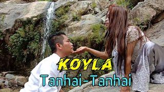 TANHAI TANHAI [PARODI INDIA versi INDONESIA, KOYLA]