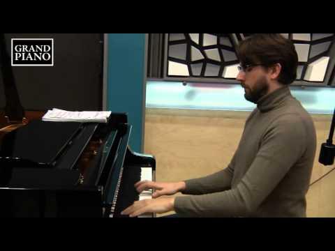 GRIEG: Concerto in A minor (Petersson, Prague Radio Symphony, Stratton) [Grand Piano GP689]