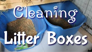 How I Clean My Rabbits Litter Boxes