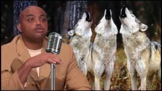 Best of Charles Barkley 2016