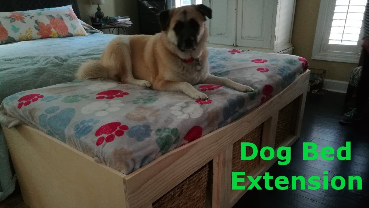 Dog bed extension. Twin sized bed extension for my Mother ...