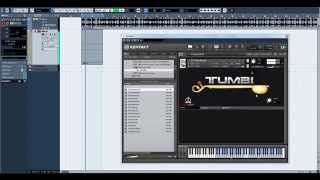 Tumbi Instrument Tutorial