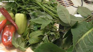 Засолка помидор на зиму Видео рецепт(Засолка помидор на зиму- это естественный процесс брожения Засолка помидор на зиму дает возможность избежа..., 2014-08-16T10:03:47.000Z)