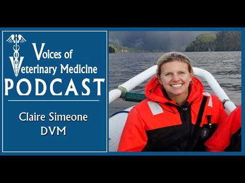2018 TED Fellow, Dr. Claire Simeone talks about being a Marine Mammal Veterinarian.