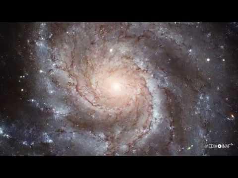 Hubble: tutti i colori della galassia NGC 3344