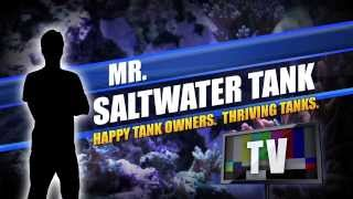 "Mr. Saltwater Tank's ""ultimate Tank Overhaul"" Of A 75 Gallon Aquarium"
