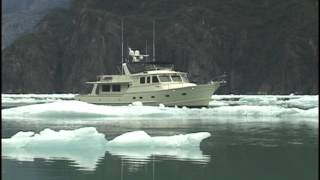 Venture on Ice; a visit to Tracy Arm Alaska