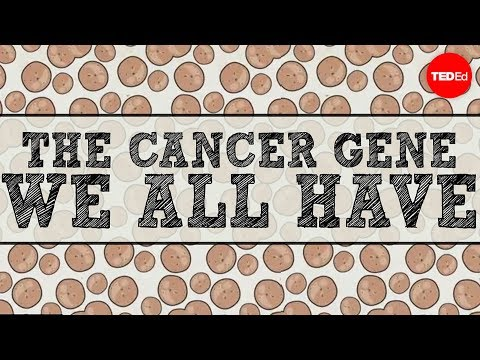 The cancer gene we all have - Michael Windelspecht