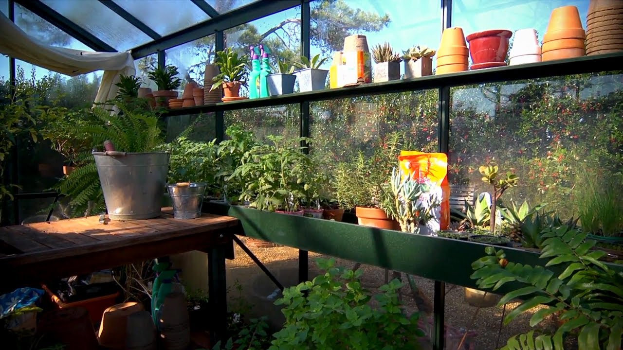 The Benefits Of A Greenhouse | At Home With P. Allen Smith   YouTube