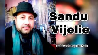 Sandu Vijelie - Am muncit de mic si-am fost sarac ( Oficial Audio )