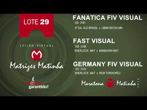 LOTE 29 Matrizes Matinha 2019