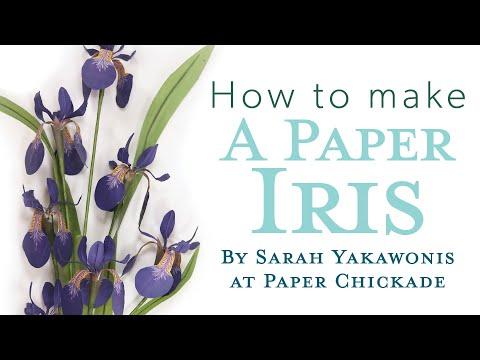 Paper Flower Tutorial | How To Make DIY Iris Tutorial