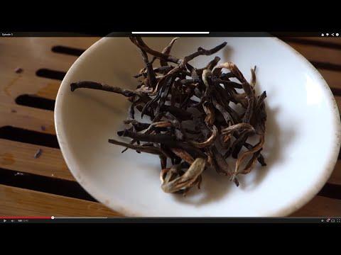 Nepalese 2014 Golden Tips (Second Flush) - What-Cha - TeaDB.org InBetweenIsode #3