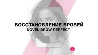 Восстановление бровей «Novel Brow Perfect»