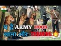 Army dogs food and training / in hindi / Army dog training / Dog channel