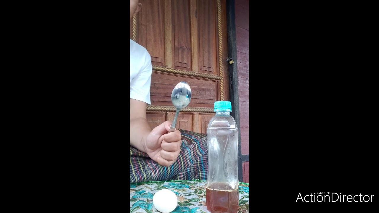 Cara mencampur telur ayam kampung dengan madu Asli - YouTube
