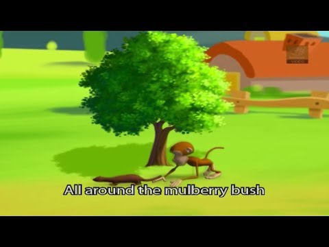 All Around The Mulberry Bush (With Lyrics) - Nursery Rhymes for Kids