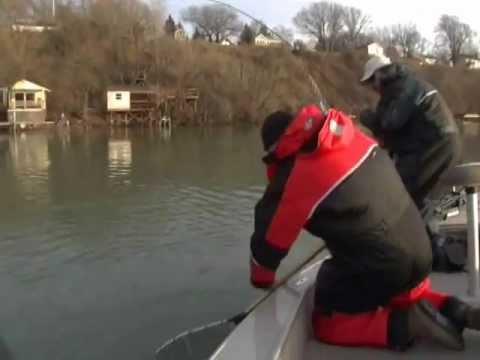 How to catch Winter Trout on the Niagara River - TorontoFishingCharters.com