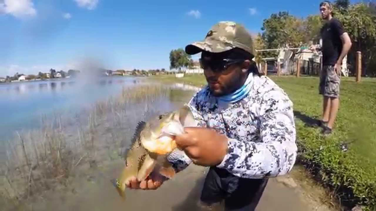 Peacock Bass Action In Miami With Monster Mike HD