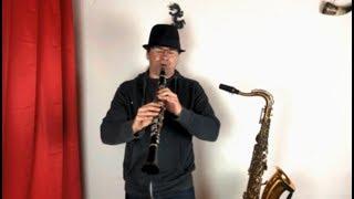 Klarinette oder Saxophon lernen per Fernunterricht