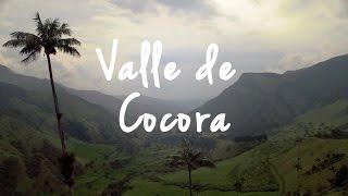 Valle de Cocora by drone (Salento, Colombia) | OpenHorizon Films