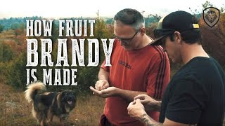 How Fruit Brandy is Made