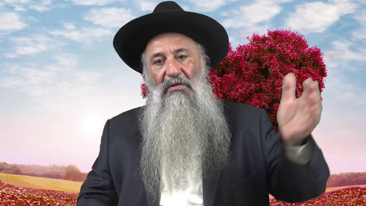 Ne te moque pas de ta fiancée - Rav Menahem Berros HD