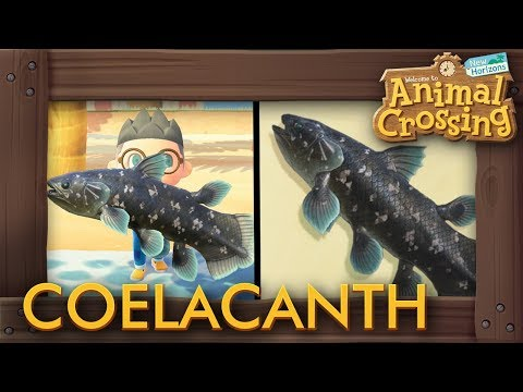 Animal Crossing: New Horizons - How To Catch Coelacanth (15,000 Bells Fish)