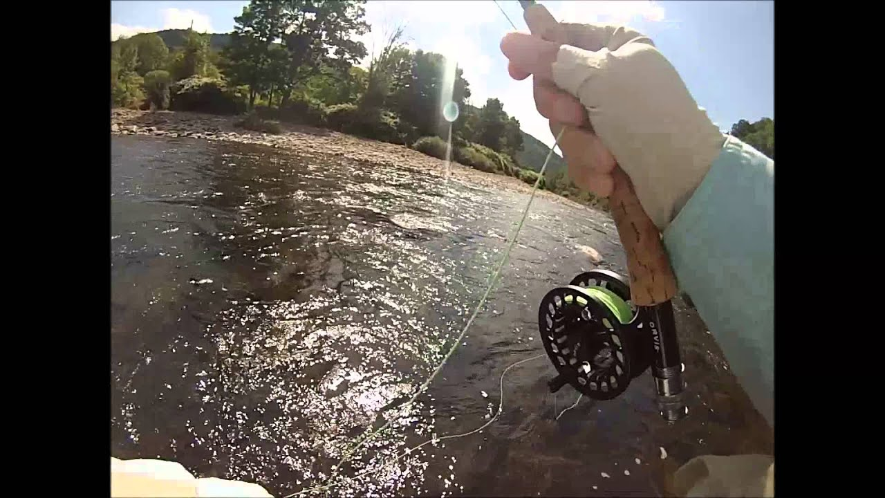 Nick fly fishing beaverkill river roscoe ny rainbow for Roscoe ny fishing
