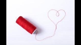 【1択】この恋を実らせるにはどうすればいいの?タロットからのメッセージ