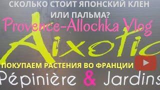 ФРАНЦИЯ VLOG.ДЕНЬ ОТКРЫТЫХ ДВЕРЕЙ AIXOTIC /ПОКУПАЕМ САЖЕНЦЫ И ЛОПАЕМ ПИЦЦУ! ОБЗОР  Provence-Allochka