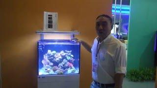 新加坡【仟湖】OF-睿寶 REVOREEF 海水套缸系列  V180