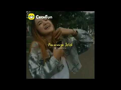 Cocofun Lucu Terbaru Story WA