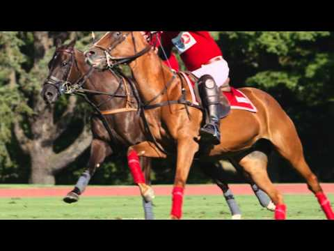 United States Polo Association | Discover the Sport