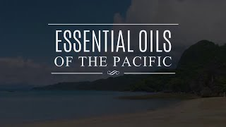 Essential Oils of the Pacific: Elemi
