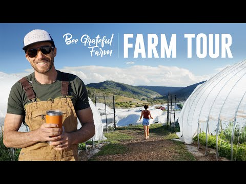 FULL TOUR of Bee Grateful Farm in the Colorado Rockies!