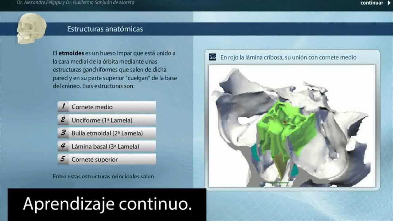 Curso Avanzado de Cirugía Endoscópica Nasosinusal - YouTube
