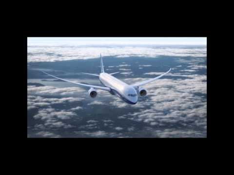 Boeing 787-10 Animation