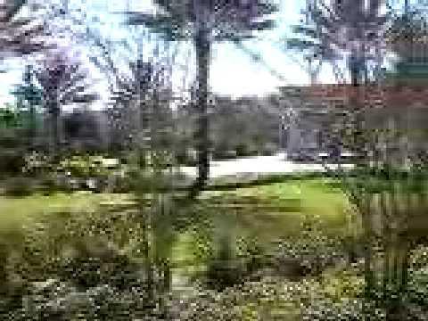 FLORCSHSC Convention Center - outdoor space around expo area
